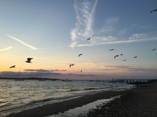 Sunset - West Neck Beach